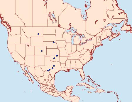 Distribution Data for Ethmia mirusella