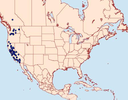 Distribution Data for Parabagrotis formalis