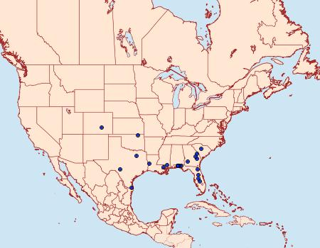 Distribution Data for Schinia petulans