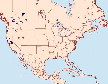 Distribution Data for Coleophora wyethiae
