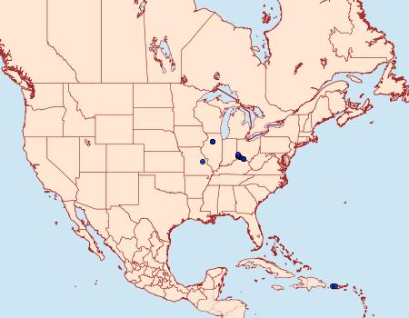 Distribution Data for Astrotischeria heliopsisella