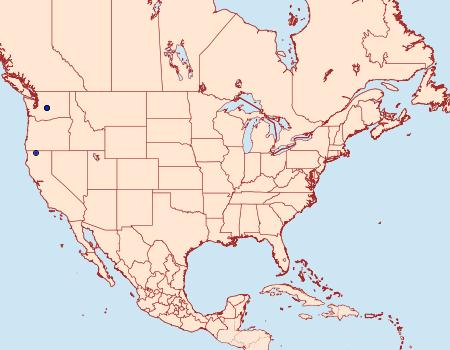 Distribution Data for Scythris inspersella