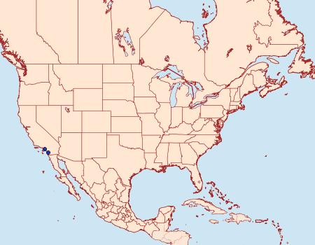 Distribution Data for Prodoxus californicus
