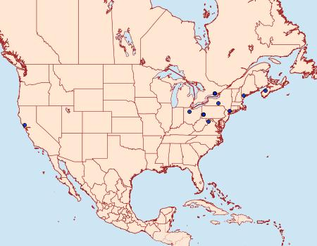 Distribution Data for Chionodes gilvomaculella