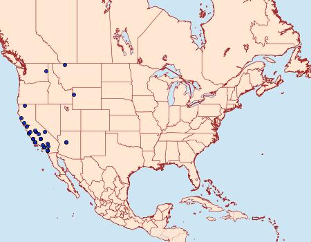 Distribution Data for Aroga paraplutella