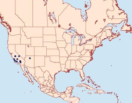 Distribution Data for Ypsolopha maculatella