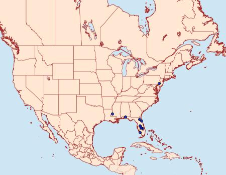Distribution Data for Ceratophaga vicinella
