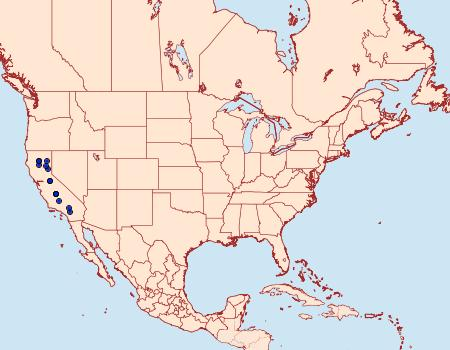 Distribution Data for Anthocharis lanceolata