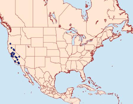 Distribution Data for Satyrium auretorum