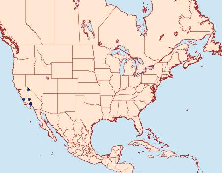 Distribution Data for Scoparia californialis