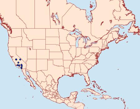 Distribution Data for Chrismania pictipennalis