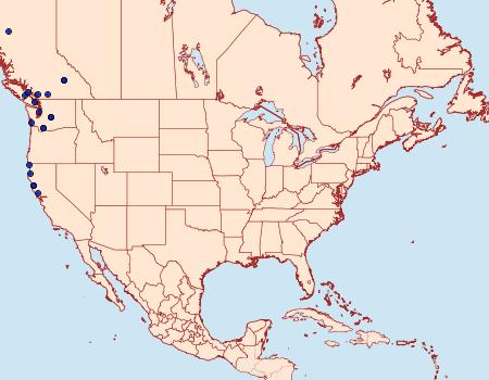Distribution Data for Udea washingtonalis