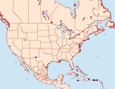 Distribution Data for Diaphania elegans