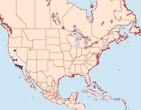 Distribution Data for Crambus rickseckerellus