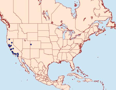 Distribution Data for Pima albocostalialis