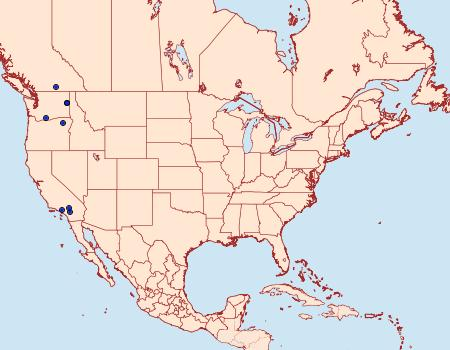 Distribution Data for Dioryctria okanaganella
