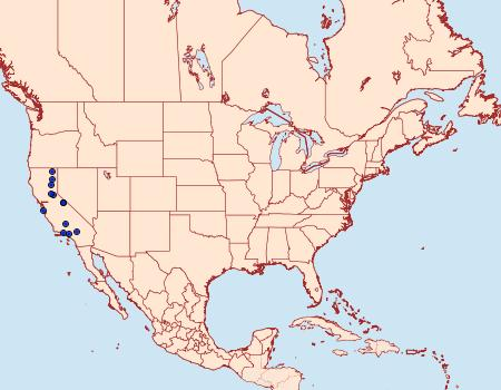 Distribution Data for Oidaematophorus grisescens
