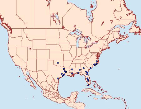 Distribution Data for Macaria varadaria