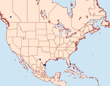 Distribution Data for Psamatodes atrimacularia