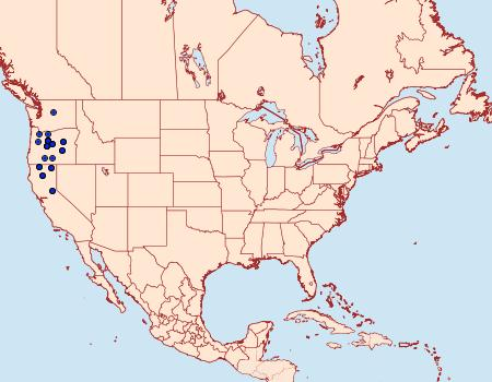 Distribution Data for Digrammia modocata