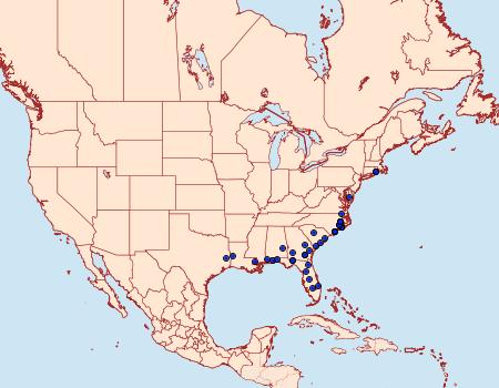 Distribution Data for Tacparia zalissaria