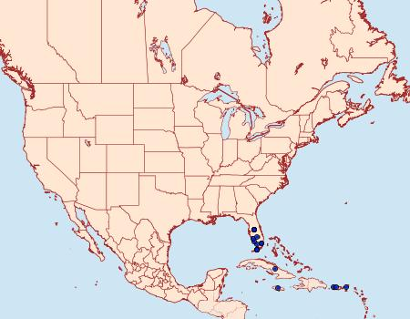 Distribution Data for Chloropteryx paularia