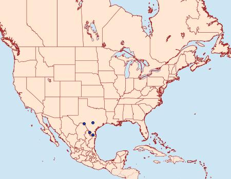 Distribution Data for Euacidalia brownsvillea