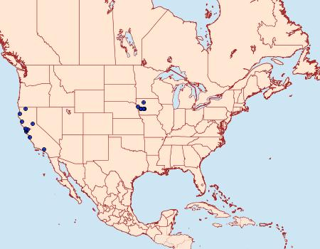 Distribution Data for Stigmella ceanothi