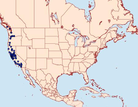 Distribution Data for Hydriomena nubilofasciata