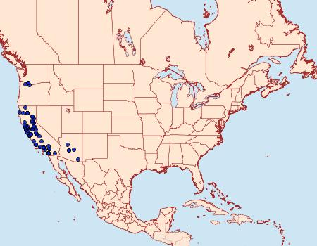 Distribution Data for Triphosa californiata
