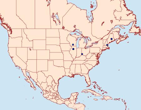Distribution Data for Phyllonorycter bataviella