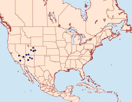 Distribution Data for Hemileuca neumoegeni