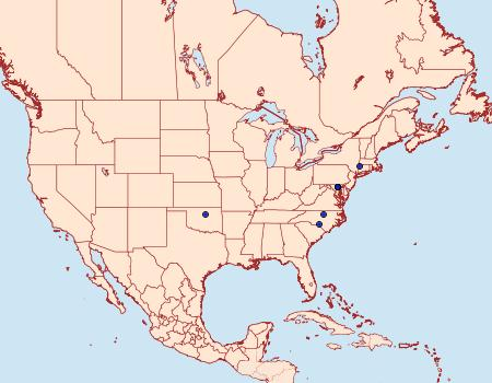 Distribution Data for Stigmella villosella