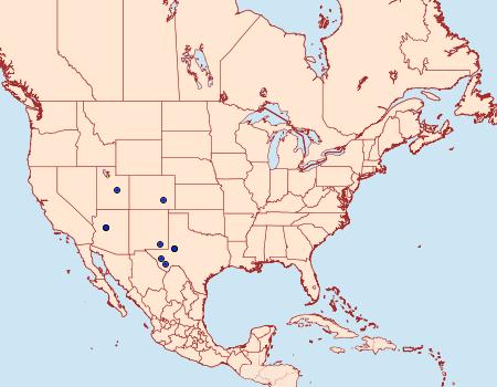Distribution Data for Pygarctia neomexicana