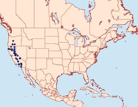 Distribution Data for Mycterophora rubricans