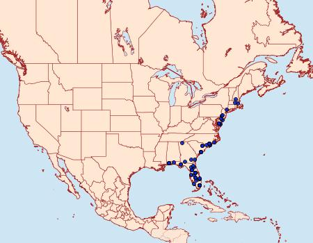 Distribution Data for Argyrostrotis quadrifilaris