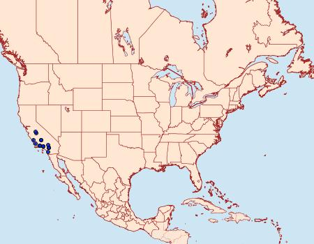 Distribution Data for Catocala californiensis