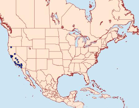 Distribution Data for Exaeretia nechlys