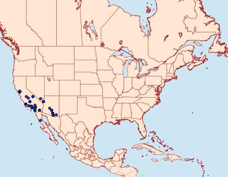 Distribution Data for Ponometia acutus