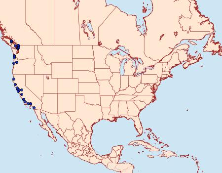 Distribution Data for Oligia tusa