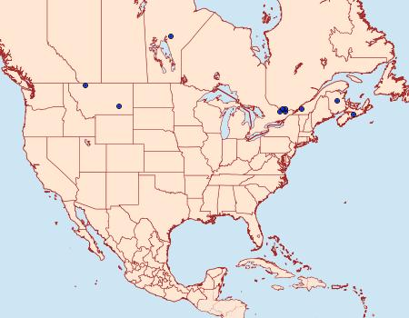 Distribution Data for Neoligia canadensis