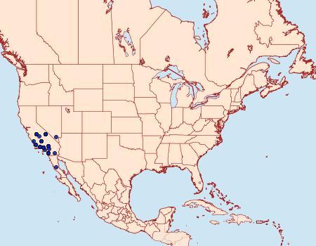 Distribution Data for Aseptis susquesa