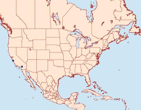 Distribution Data for Ethmia tricula