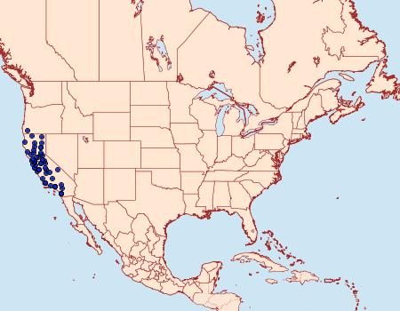 Distribution Data for Ethmia arctostaphylella