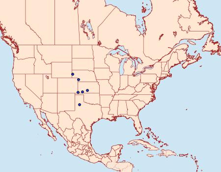 Distribution Data for Nocloa duplicatus