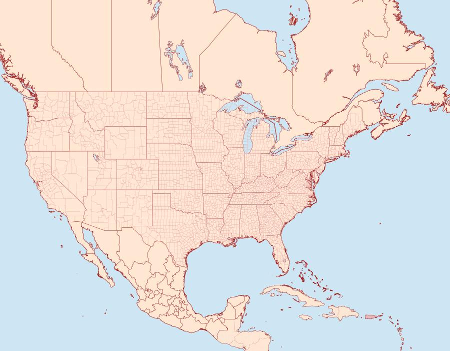 Distribution Data for Stigmella amelanchierella